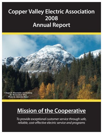 2008 Annual Report - Copper Valley Electric Association