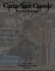 Production Sale - Armstrong Bucking Bulls