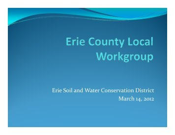 Local workgroups and Phosphorus issue in Lake Erie