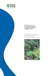 rapport 2011/5 Fiskinventering i Hågaån 2010 - Upplandsstiftelsen
