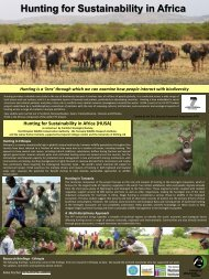 Hunting for Sustainability in Africa