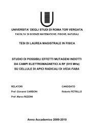 UNIVERSITA' DEGLI STUDI DI ROMA TOR VERGATA ... - statistiche