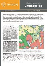 Ungskogpleie - PDF - Skogbrukets kursinstitutt