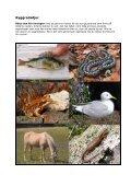 Artbestämningsnycklar och klassificering av organismer - Page 2