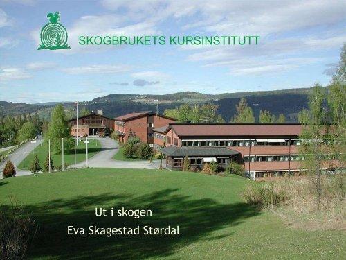 Ut i skogen - Skogbrukets kursinstitutt