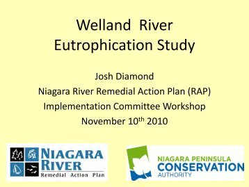 Welland River Eutrophication Study – November 2010
