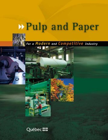 Pulp and Paper: For a Modern and Competitive Industry - Finances