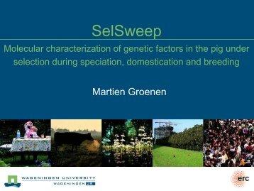SelSweep Molecular characterization of genetic ... - Quantomics