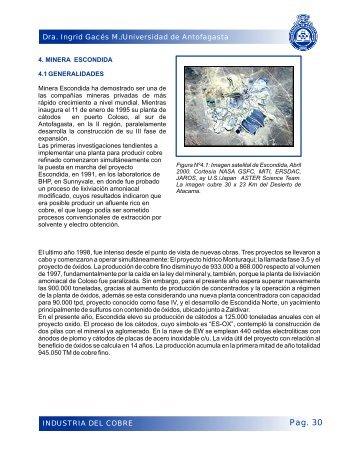 capitulo 4 - Universidad de Antofagasta