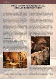 Článok v pdf
