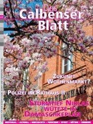 Sturmtief Niklas Damaschkeplan