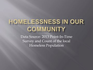 2013 survey of the regional homeless population