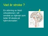 Time i Brain - Utbildning primärvård och kommun, E.B