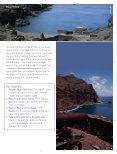 St Helena National Trust Vision - UKOTCF - Page 7