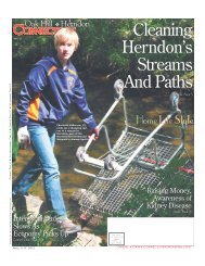 Cleaning Herndon's Streams And Paths - The Connection ...