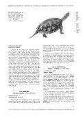 notes sobre alguns répíils de la comarca de banyoles - Raco - Page 3