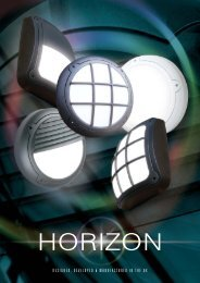 ASD Horizon 12pp - WF Senate