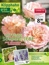 sommeR-Hit - Garten-Center Klipphahn