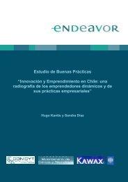 Innovación y Emprendimiento en Chile: una radiografía de los ...
