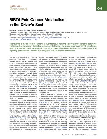 SIRT6 Puts Cancer Metabolism in the Driver's Seat - ResearchGate