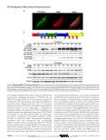 Journal of Biological Chemistry - ResearchGate - Page 6