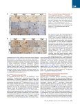 Cell - Costas A Lyssiotis - Page 4