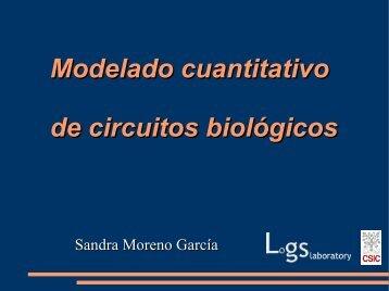 Modelado cuantitativo de circuitos biológicos