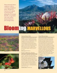 Download this article as a pdf - Audley Travel