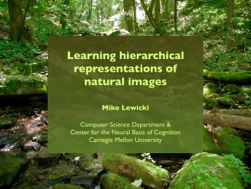 Learning hierarchical representations of natural images - Cognitive ...