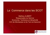 Le commerce dans les SCoT (source CCI 82) - Pays Midi-Quercy