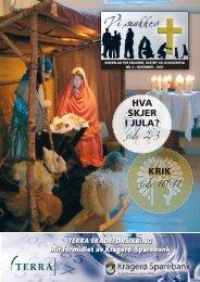 2007-4 - kirkene i Kragerø