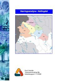 Næringsanalyse Hallingdal, 2008 - Regionrådet for Hallingdal