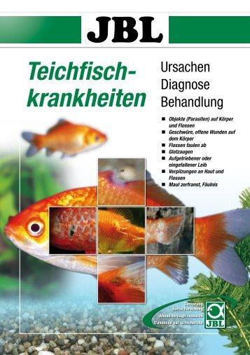 Teichfisch- krankheiten - Thommys Zooladen