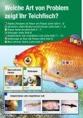 Teichfisch- krankheiten - Thommys Zooladen - Seite 2