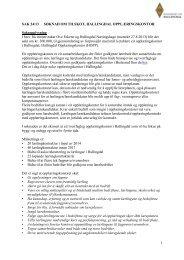 Sak 24/13 - Regionrådet for Hallingdal