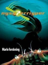 Marin forskning - Nysgjerrigper