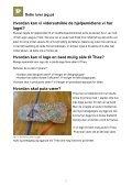 Hvordan kan vi videreutvikle hjelpemidlene vi har ... - Nysgjerrigper - Page 5