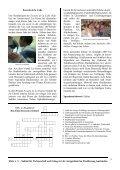 Rundbrief Nr. 6, August 2007 - Elote - Seite 4