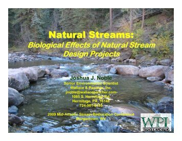 Natural Streams: