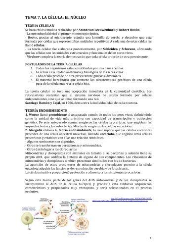 Divisiones chlorophyta y charophyta centro jard n bot nico de - El jardin de calula ...