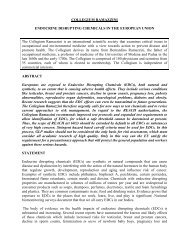 Endocrine Disrupting Chemicals In The European Union