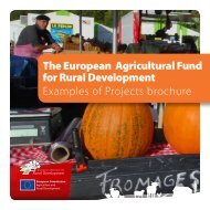 The European Agricultural Fund for Rural ... - Rural Network NI