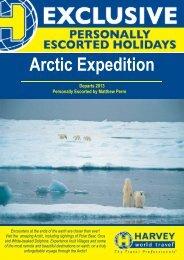 2013 Arctic A4 flyer