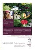 Sinistä ja punaista - Tikkurila - Page 7