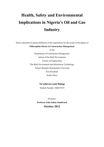 Health, Safety and Environmental Implications in Nigeria's Oil and ...