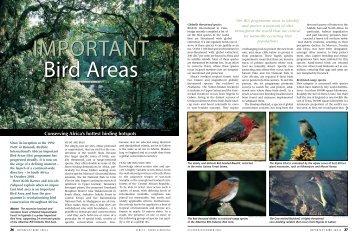 Important Bird Areas: conserving Africa's hottest birding hotspots