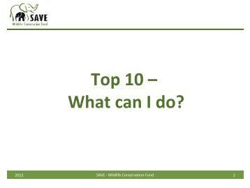 Top 10 – What can I do? - SAVE Wildlife Conservation Fund