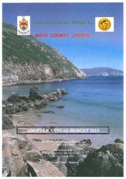 Adopted 2013 Budget (PDF-4657 kb) - Mayo County Council