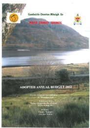 Adopted 2012 Budget - Mayo County Council