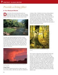 Backyard Woods -- Bring Your Vision to Life - Arbor Day Foundation